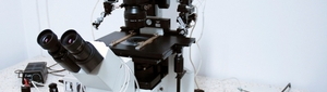 Electron Microscopy and Molecular Pathology Department